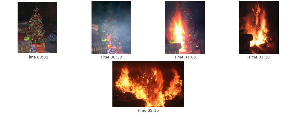 Tree Fire Progression