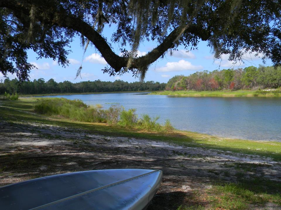 Horseshoe Lake Canoe