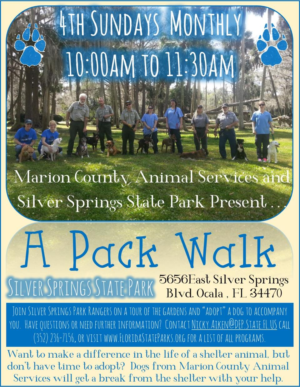 color Pack Walk flyer