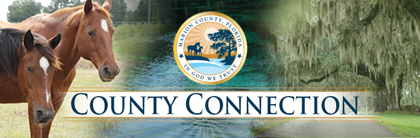 MC_County Connection_General Header