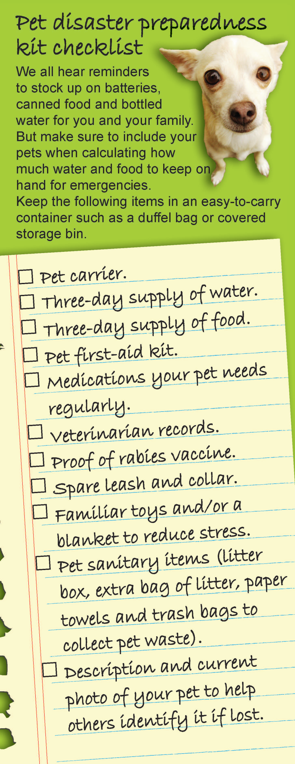 pet friendly emergency checklist