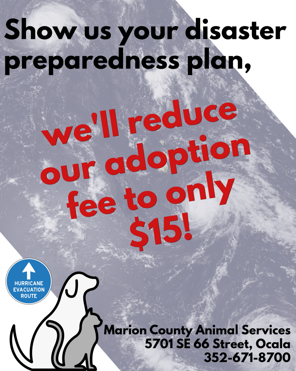 Marion County Animal Services | Marion County, FL