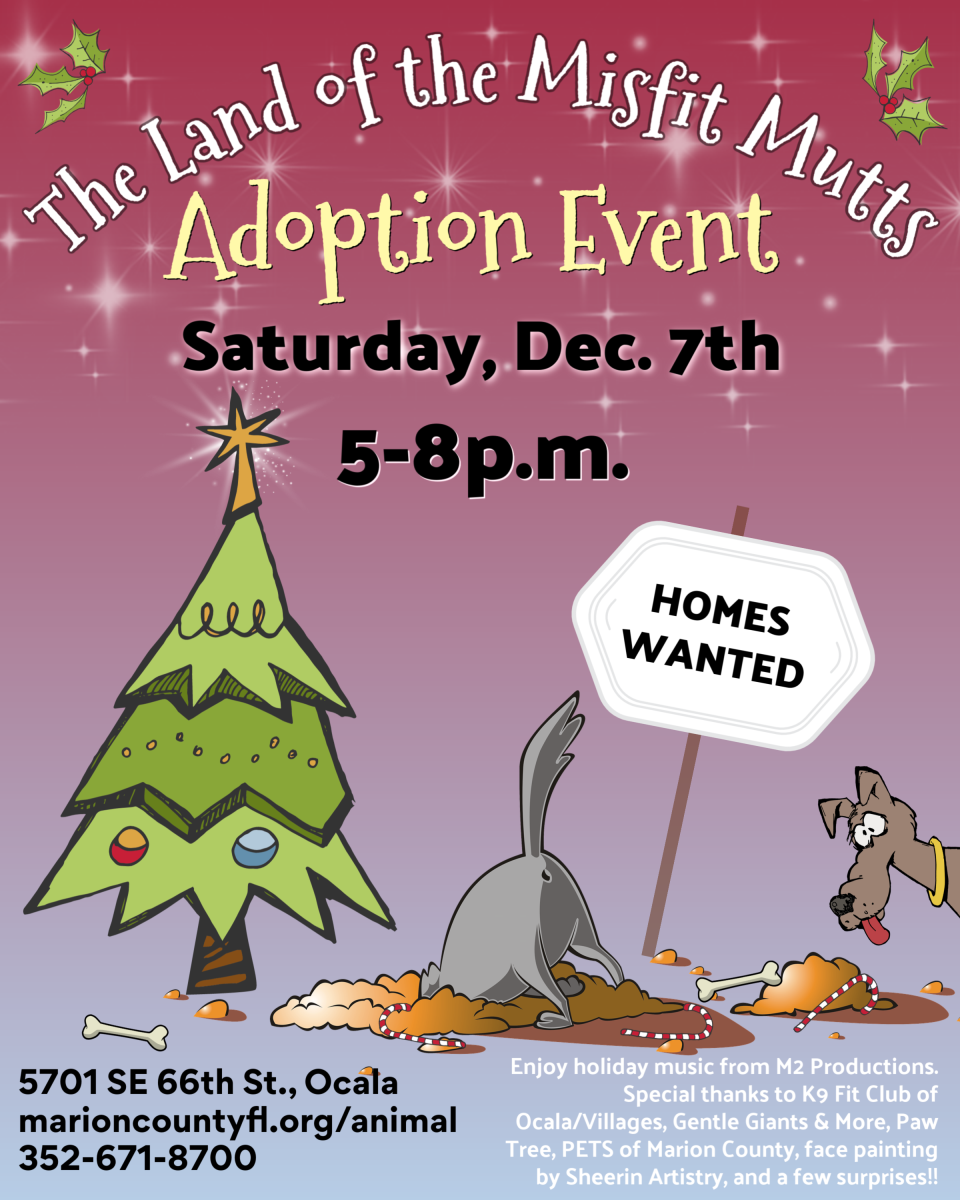 Adoption event flier