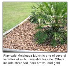 Melaleuca Mulch Is An Environmentally Friendly Alternative To Cypress It S Naturally Termite Resistant And Nematode Free
