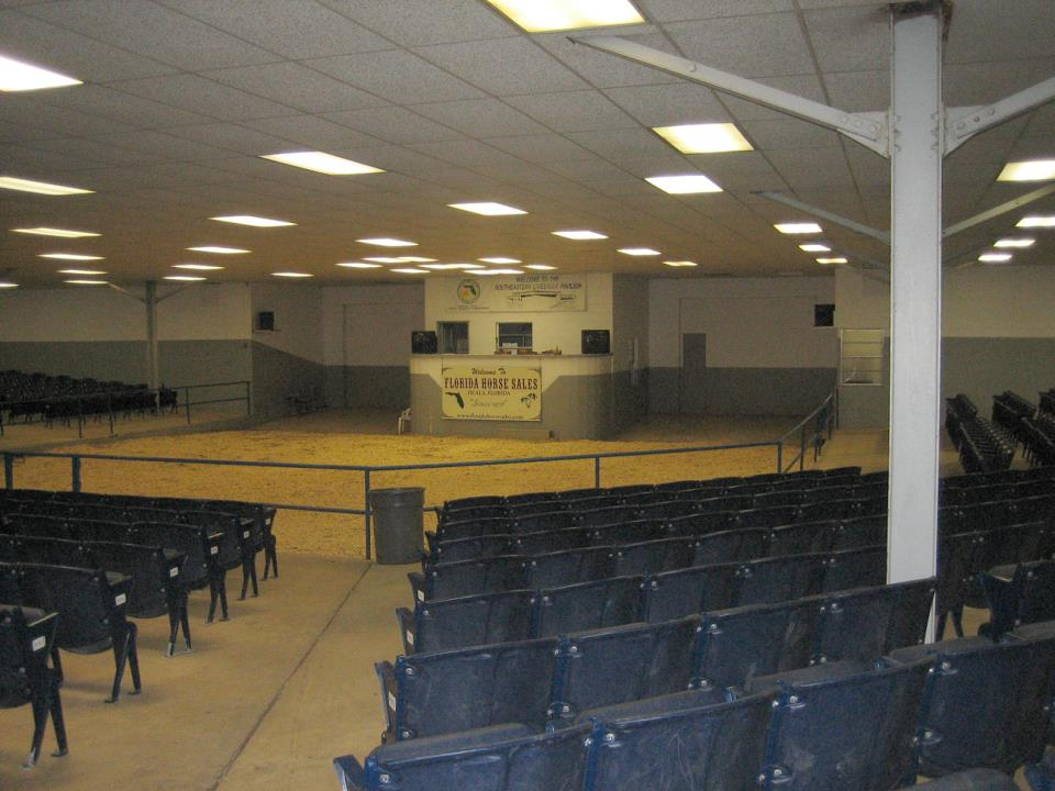 Sale Arena 1
