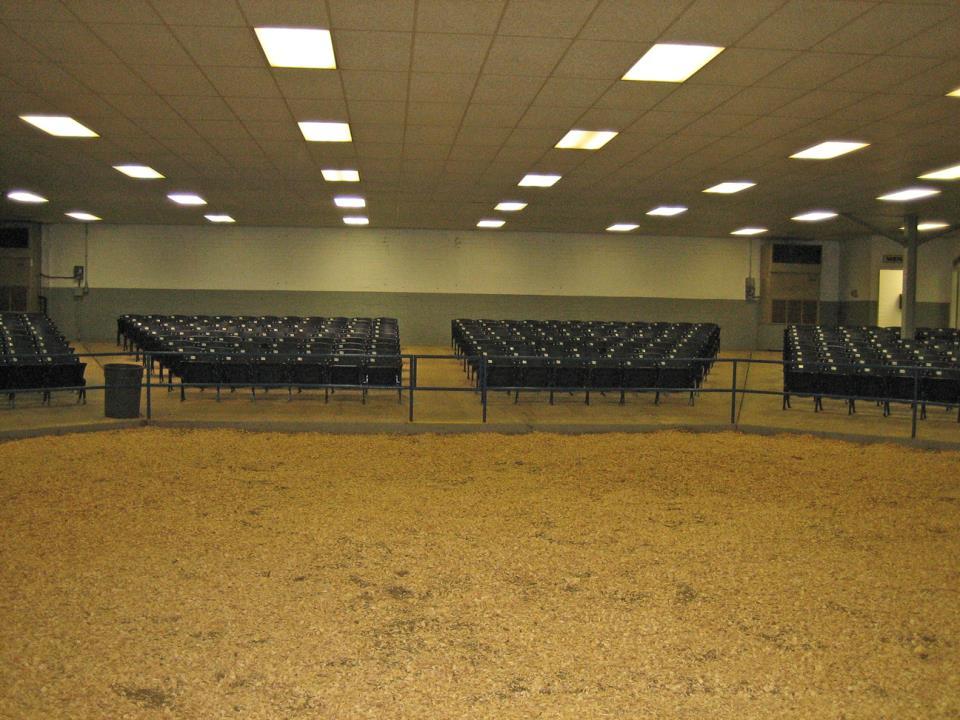 Sale Arena 2