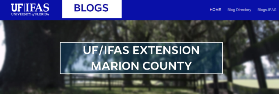 IFAS Blogs Marion County